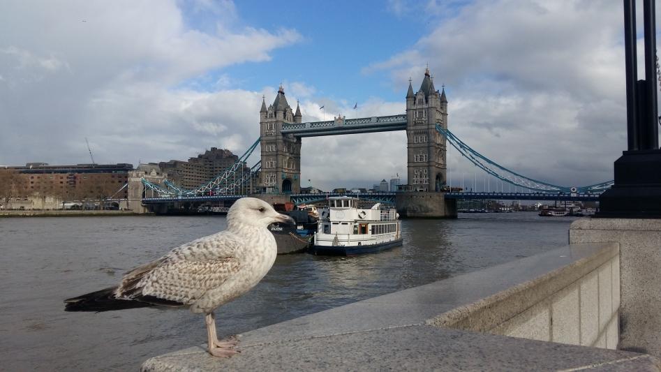 Zájezd do Londýna a Oxfordu